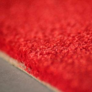 Pure 1212 rubin detail