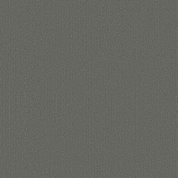 Chicc 913 light grey