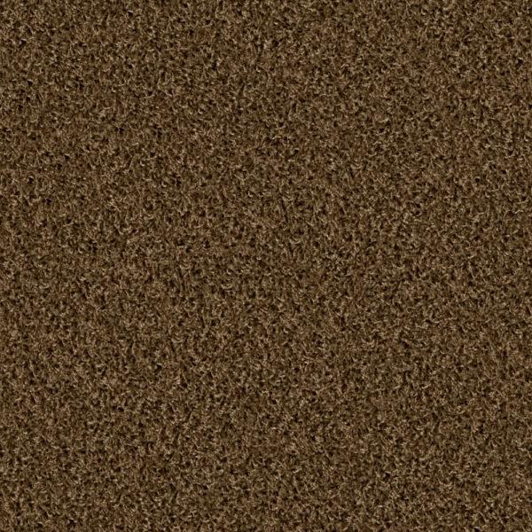 Poodle 1405 havanna