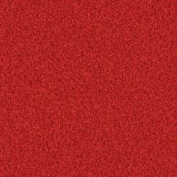 Poodle 1407 reddy