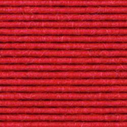 C 116 erdbeere